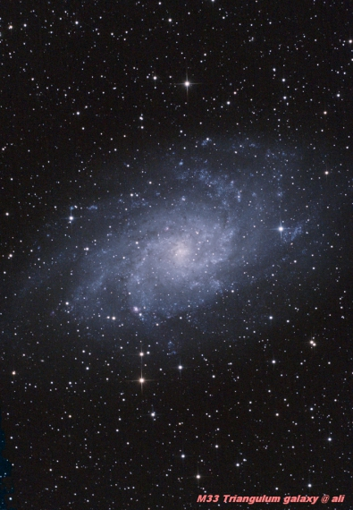M33-Triangulum Galaxy